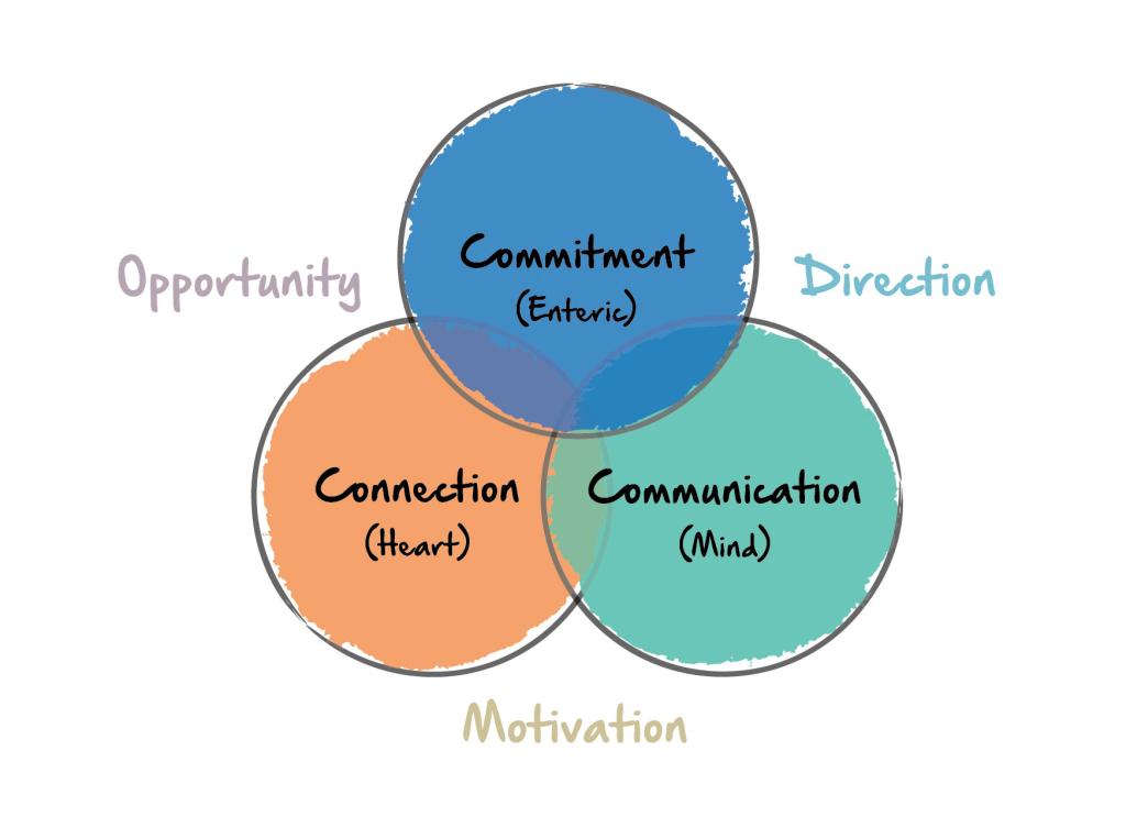 LL leadership model_RGB