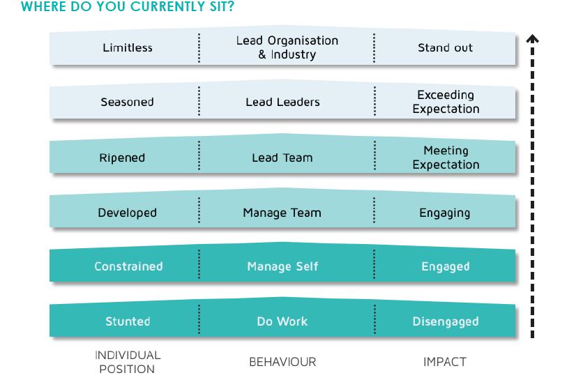 Limitless Leadership Model